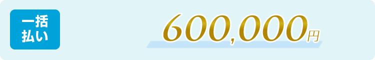 一括払い:550,000円(税抜)